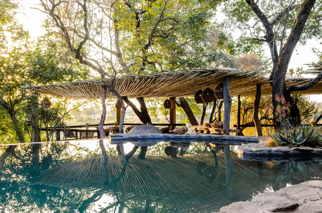 South Africa Luxury Hosted Flying Safaris Safari  : LodgeDetail from www.safariarchitects.com size 1280 x 848 jpeg 438kB