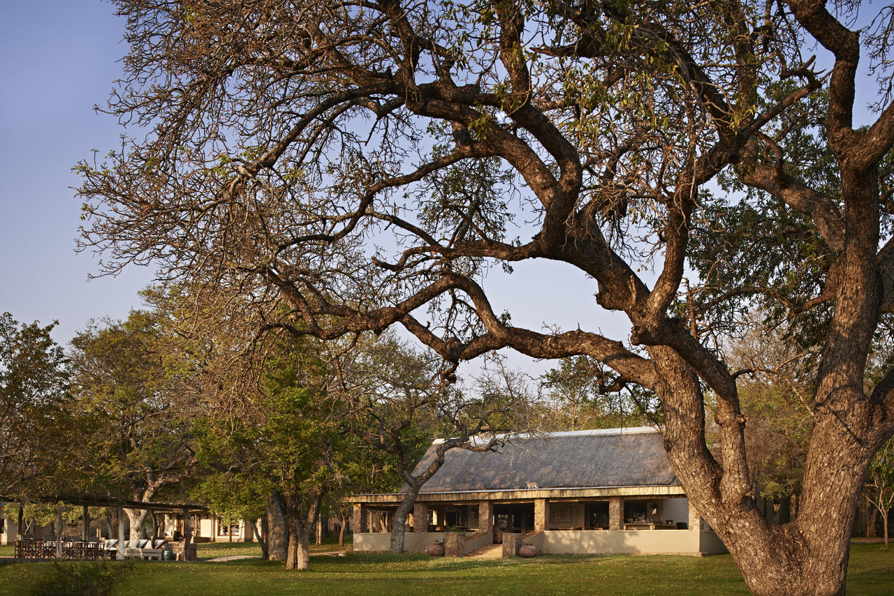 South Africa @ Luxury Hosted Flying Safaris | Safari Architects