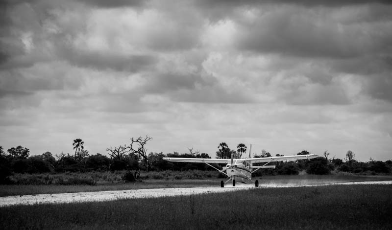 Our plane takes off after dropping us in the middle of the Okavango Delta.